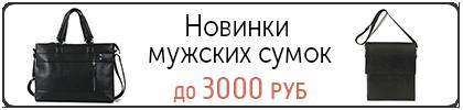 Новинки мужских сумок до 3000 руб